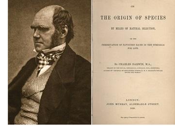 Darwins Origin of Species